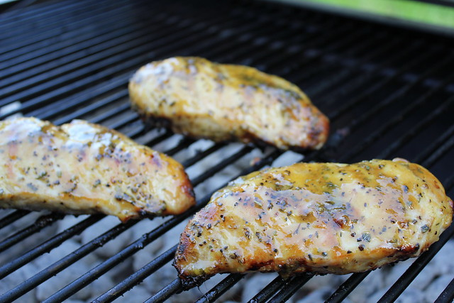 Honey Mustard Grilled Chicken Recipe