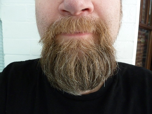 Mai Beard, Please See It