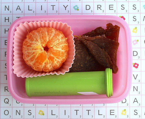 Kindergarten snack box - clementine, sunflower kernels, turkey jerky