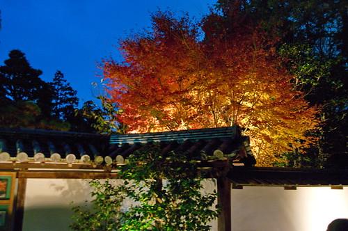 【写真】2012 紅葉 : 南禅寺/2020-04-04/IMGP7177
