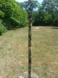 Summer of Love: found & lost. An art exhibit.