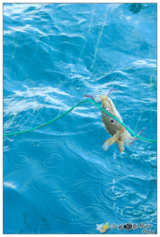 2013歐船長東海休閒漁業_13