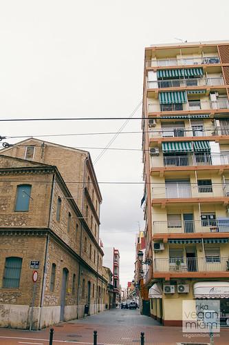 Valencia, Spain, Day 8