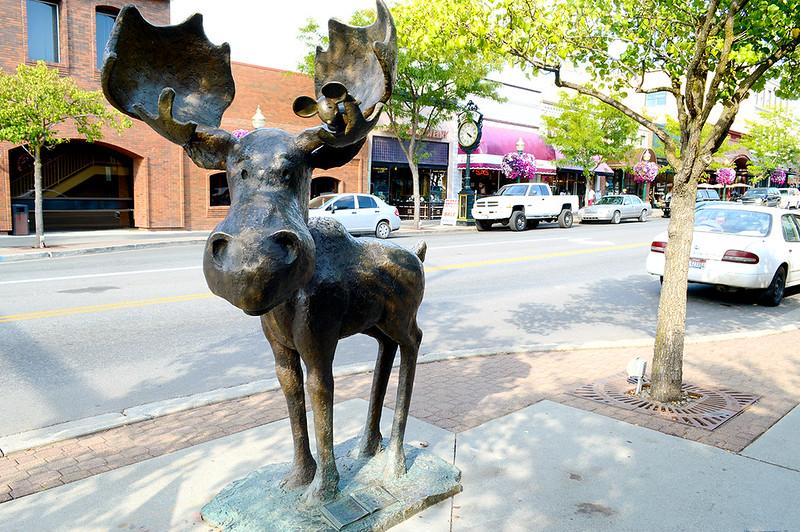 Coeur D'Alene Moose Landmark