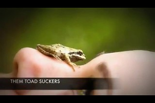 Them Toad suckers