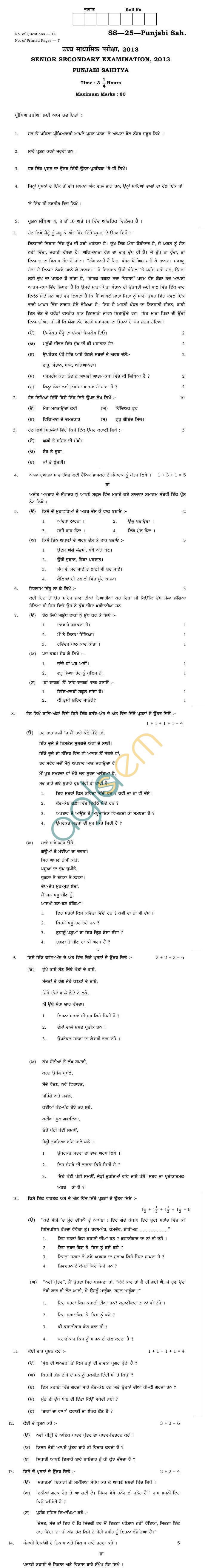 Rajasthan Board Sr. Secondary Punjabi Sahitya Question Paper 2013