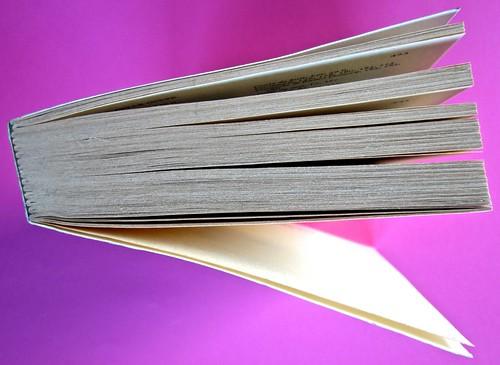 Soglie, di Gérard Genette. Einaudi 1989. Responsabilità grafica non indicata [Munari]. Taglio superiore (part.), 1