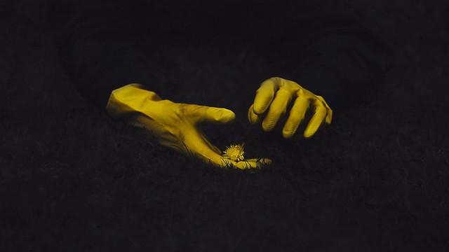 Albin Thelander - amongst death
