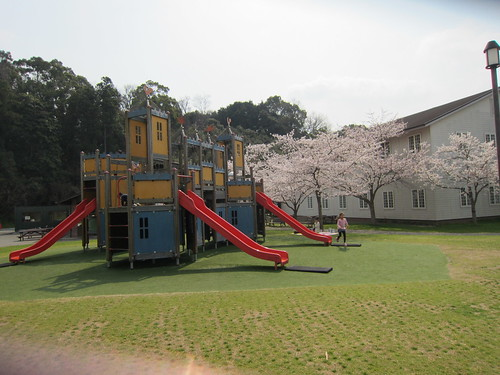 playground in spring