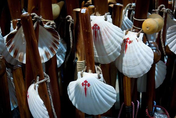 Shells of Camino de Santiago, Galicia.