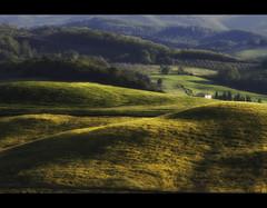 L'ombra delle colline