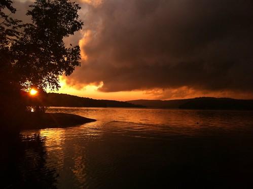 sunset scenic 2012 florafauna