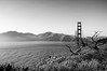 BW Golden Gate Bridge 2 of 2