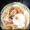 Iced latte looking through a straw