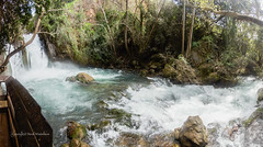 Banias Waterfall 2