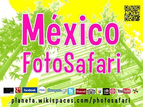 México FotoSafari 2013