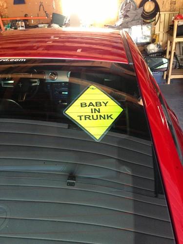 trunkbabby