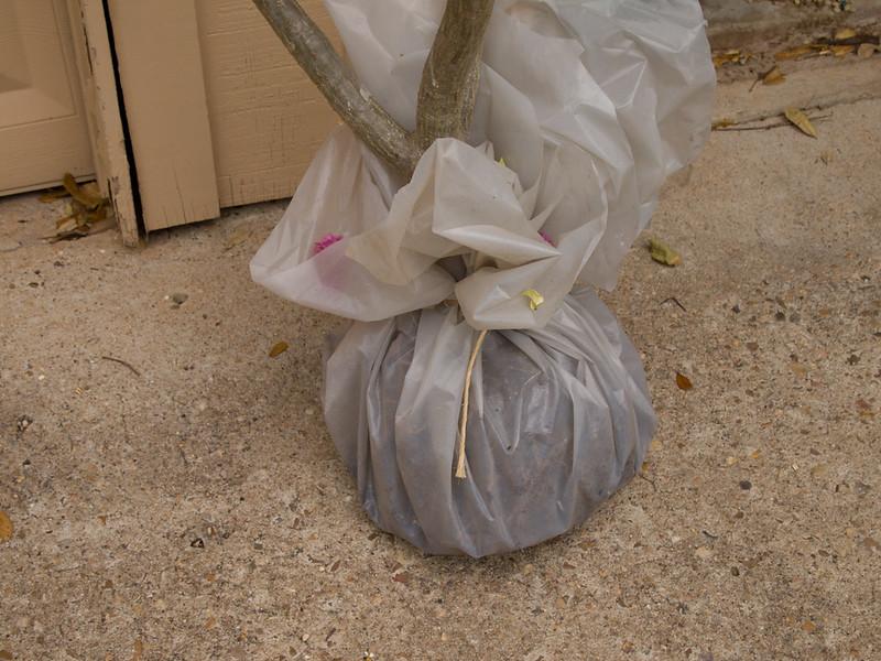 2013-3a-3081097_Plastic wrap (2)