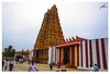Nallur Kandaswamy Kovil-srilanka