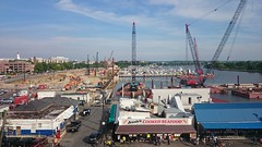 Cranes at the Wharf, May 2015