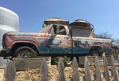 OstrichLand Pickup Truck