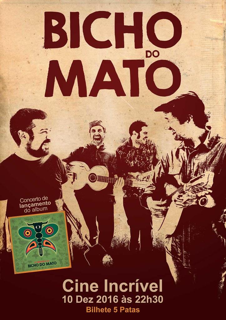 BICHO DO MATO - RETRATOS PROMOCIONAIS -- Daniel Catarino - voz,