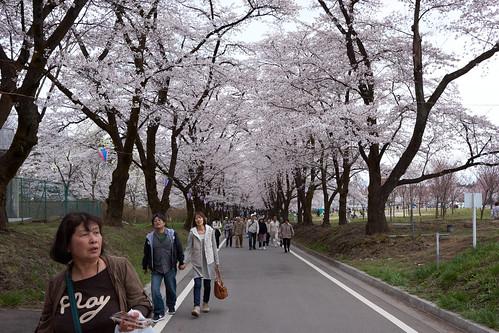 AKG_2012-04-19_031