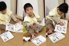 起きてすぐ読書する熱心なとらちゃん(2012/4/25)