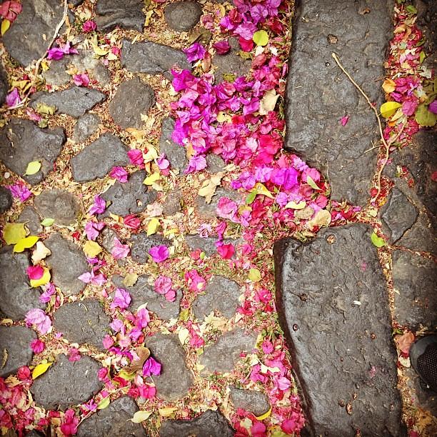 Até o chão é lindo em San Angel, #méxicodf