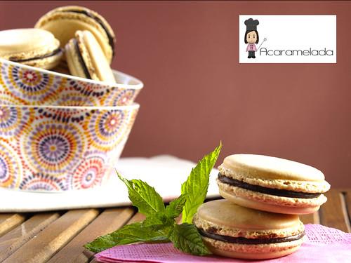 macaron3 by Acaramelada