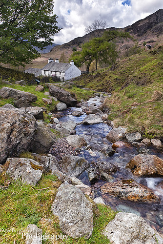 The House Downstream by Dave Brightwell