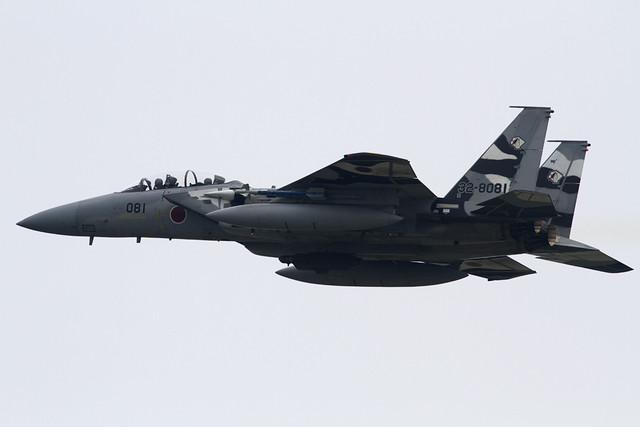 JASDF F-15DJ Aggressor