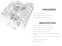 Parametric Intentions