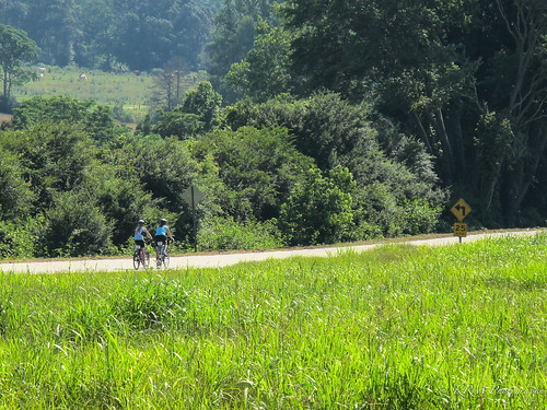 canon brag g11 bicyclerideacrossgeorgia cyclinglogistics