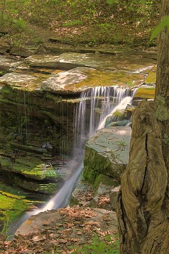 waterfall twinfalls glencreek oddtreetrunk