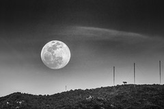 """滿月 Full Moon"" / 香港夜之寧 Hong Kong Night Serenity / SML.20130524.7D.42095.C23.BW"