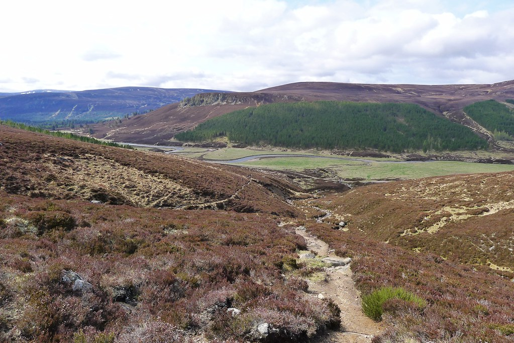 Track away from Glen Lui