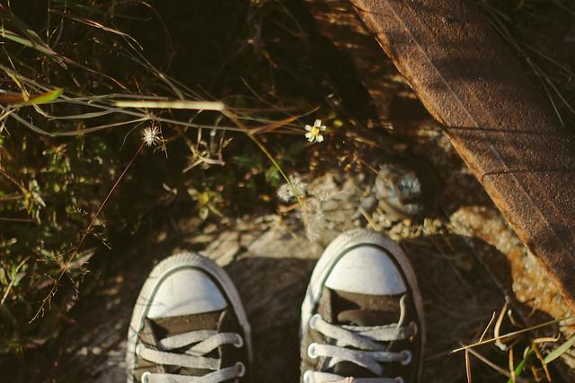pequeños pasos