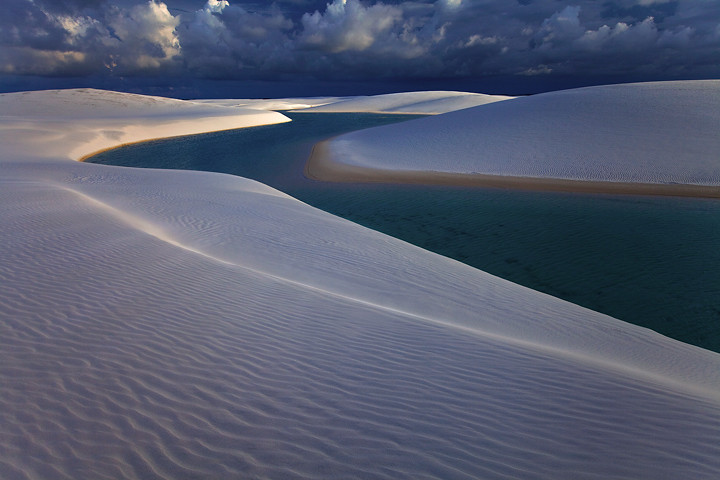 Metallic Dunes by Michael Anderson