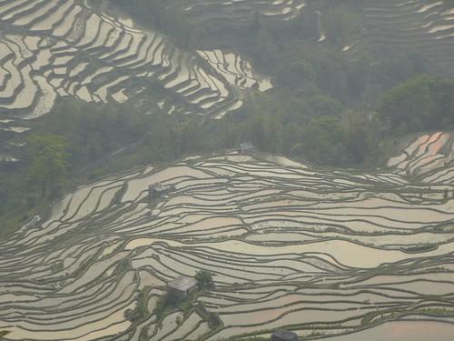 Yunnan13-Yuanyang 24-Bada (66)