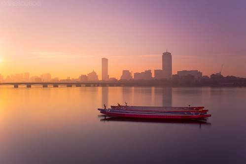 Sculls on Charles River at Sunrise, Back Bay Boston Skyline and Harvard Bridge by Greg DuBois Photo
