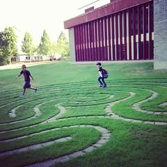 sport venue(0.0), playground(0.0), stadium(0.0), garden(1.0), grass(1.0), labyrinth(1.0), lawn(1.0),