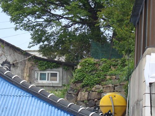 Goseong Waeseong 고성왜성