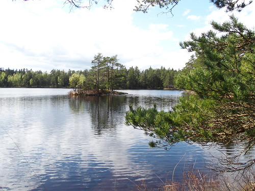 SÖ E12 Trönsjön
