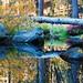 Bridalveil Creek Reflection by Freightdog Photography - Jared Romanowicz