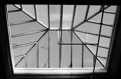 Salmon Bay K-8 Gymnasium Skylight