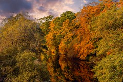 river Lossie Elgin