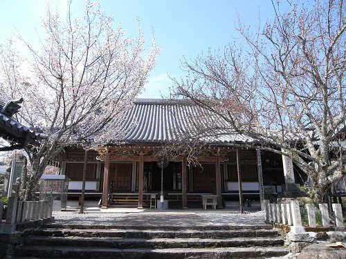 吉野の桜2011@吉野山-23