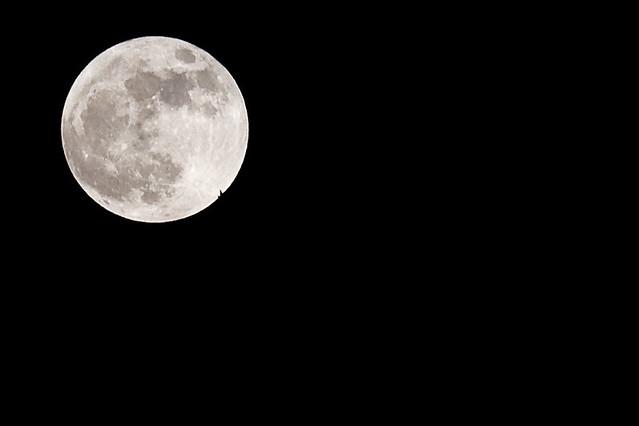 moon_11
