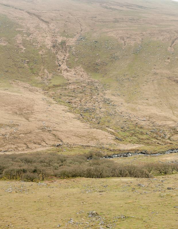 Darmoor Landscape
